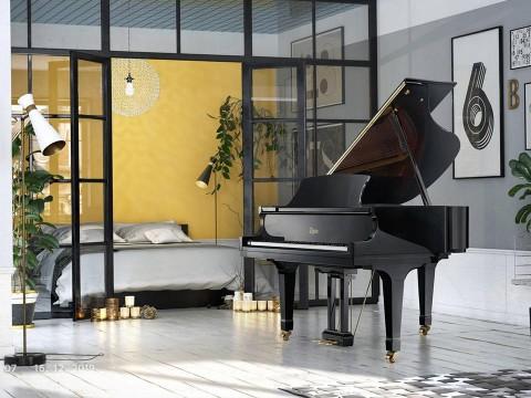 """TẠI SAO GRAND PIANO RẤT ĐÁNG """"ĐỒNG TIỀN BÁT GẠO""""?"""